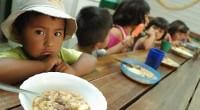 Para la organización civil Oxfam no hay tiempo que perder y pide actuar de inmediato para erradicar el hambre en la región de América Latina y el Caribe; por ello, […]