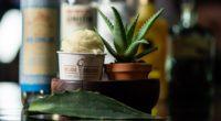 La heladería mexicana, que se caracteriza por sus helados con y sin alcohol, creo un nuevo sabor muy original, y que es la línea de pulque, que se pueden probar, […]