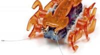 ¿Sabías que se ha comprobado que la hormiga es el animal con el cerebro más grande en proporción a su talla? La Hexbug Hormiga tiene un cuerpo interior cargado de […]