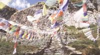 """El pasado miércoles 15 de junio, en la Galería Digital Epson, se inauguró la exposición """"Himalaya"""", del fotógrafo José Cruz del Corral. Nuestro director general, Adolfo Montiel Talonia lo saluda. […]"""
