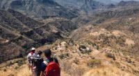 La Asociación Mexicana de Energía Solar (Asolmex) y Cubico Sustainable Investments, a través de Rutas y Raíces, entregarán 200 kits solares que beneficiarán a igual número de familias huicholes de […]