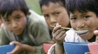 Con base al Plan de Seguridad Alimentaria, Nutrición y Erradicación del Hambre 2025 presentado por FAO, la organización no gubernamental Oxfam consideró que aún se carece de avances sustanciales en […]