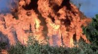 La Comisión Nacional Forestal (Conafor) dio el banderazo de salida a las acciones para enfrentar el fuego durante el presente estiaje. El Programa Nacional de Protección contra Incendios Forestales opera […]
