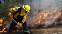 Incendios de pastizales Adolfo Montiel Talonia Muerte en Xochimilco. Pero nadie lo lamenta. Todos, en público, se declaran ambientalistas. En la vida diaria no cumplen con la responsabilidad de prever, […]