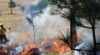 La Comisión Nacional Forestal (CONAFOR) de la Ciudad de México informó que se desplegarán mil 269 elementos, entre oficiales de los tres niveles de gobierno y voluntarios, para el operativo […]