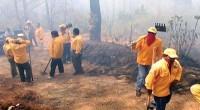 El fin de semana se presentaron alrededor de 199 incendios forestales diarios en el país, rompiendo record en comparación con el año 2011, así lo informó Jorge Rescala Pérez, Director […]