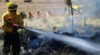 La Secretaría de Medio Ambiente y Recursos Naturales y la Comisión Nacional Forestal (Conafor) informan la situación de los incendios forestales en el país al 02 de mayo con corte […]