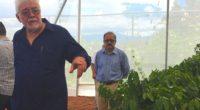 El encapsulado es una alternativa que puede elevar el nivel de eficiencia en el uso de fertilizantes del 20% al 90% en cultivos agrícolas, generar beneficios ambientales y económicos. Además, […]