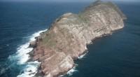 Las islas mexicanas son uno de los lugares más ricos e importantes del mundo en cuanto a biodiversidad y en número de especies endémicas, debido a su aislamiento geográfico y […]