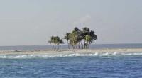 Nadie sabe con exactitud cuál es el número de islas que existen en México. Las cifras oficiales refieren un total de mil 644, de las cuales, mil 171 carecen de […]