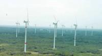 Ante la nula capacidad de coordinación del gobierno de Felipe Calderón y el sector empresarial mexicano para hacer de su parte un uso sustentable de recursos naturales en México, como […]