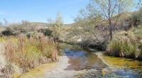 La Comisión Nacional de Áreas Naturales Protegidas (Conanp), dio a conocer que el humedal Manantiales Geotermales de Julimes, ubicado en Chihuahua fue designado Sitio de Importancia Internacional, ante la Convención […]