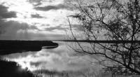 La Comisión Nacional de Áreas Naturales Protegidas (Conanp), dependiente de la Semarnat, informó que se logró la incorporación de seis humedales mexicanos a la lista de la Convención Ramsar. Estos […]