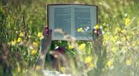 Las notas informativas, reportajes, artículos y editoriales sobre ecología, Medio Ambiente y desarrollo sustentable, escritos y publicados, se cuentan por millones, mientras que son miles los estudios científicos, verdaderos trabajos […]