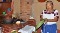 """El libro """"Comida, cultura y modernidad en México"""" fue reconocido con el premio Gourmand Awards 2012, en la categoría Lifestyle-Culinary History Book, en la que obtuvo el segundo lugar mundial, […]"""