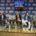 Por: Enrique Fragoso (fragosoccer) El viernes 20 de marzo en la Arena México se vivirá un momento inolvidable ya que La Peste Negra está quebrantada y sus dos ex integrantes: […]