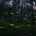 Autoridades del gobierno de Tlaxcala presentaron el inicio de la temporada de avistamiento del Santuario de las Luciérnagas, que se desarrolla desde finales del mes de junio hasta principios de […]