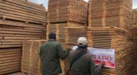 México mantiene una política integral en el cuidado de sus bosques. Tanto el combate frontal a la tala ilegal, como la reforestación y restauración de suelos ha traído como resultado […]