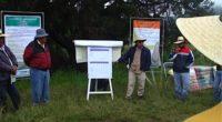Investigadores delInstituto Nacional de Investigaciones Forestales, Agrícolas y Pecuarias (INIFAP) en alianza con alrededor de 38 microempresas de capital nacional han logrado abastecer con semillas certificadas a agricultores del Centro, […]