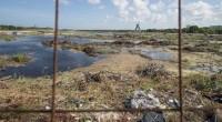 La devastación del manglar Tajamar en Cancún evidencia nuevamente la visión cortoplacista del gobierno mexicano que celebra las inversiones privadas sin tomar en cuenta que las ganancias son nulas, en […]