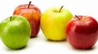 La Unión Agrícola Regional de Fruticultores del Estado de Chihuahua (UNIFRUT), informó que durante el presente ciclo 2015, se estima que la producción de manzanas en México alcanzará las 18 […]