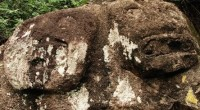 En las faldas de un macizo al norte del estado de Guerrero, en el sureste del país, muy cerca del poblado de Oxtotitlán, se ubica un monolito-altar que simboliza una […]