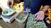 Alrededor de 147 millones de estadounidenses, entre ellos Barack Obama y algunos otros expresidentes, han confesado que fuman o fumaron alguna vez un carrujo de marihuana, lo que explica por […]