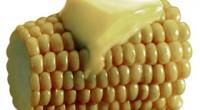 Científicos mexicanos de la Universidad Autónoma de la Ciudad de México (UACM), del Instituto Nacional de Antropología (INAH) y de otros países manifestaron que el consumo de maíz transgénico puede […]