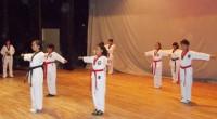 Ixtapaluca, Méx.- A partir de la próxima semana la medallista de oro de taekwondo en los Juegos Panamericanos de Guadalajara 2011, Irma Edith Contreras Rodríguez, impartirá clases a niños y […]