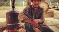 La historia y las tradiciones de un pueblo, son días de sus estandartes principales. En el caso de México, conocer a fondo la esencia de sus raíces se puede hacer […]