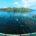 """La empresa Regal Springs México informó que introduce al país el programa """"Cuidamos"""", el primero en su tipo enfocado a la sustentabilidad totalmente integrada de la cadena del pez conocido […]"""