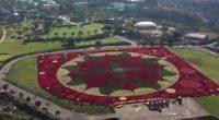 """Se dio a conocer que productores ornamentales del estado de Morelos consiguieron un nuevo récord Guinness por conformar el """"Tapete Floral más grande del mundo"""", al agrupar 127 mil plantas […]"""
