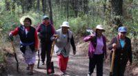 En Tlaxcala, un grupo de 15 mujeres, la mayoría de la tercera edad, realizan actividades de protección y conservación en el Parque Nacional Malinche o Matlalcuéyetl (Señora de las faldas […]