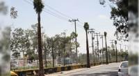 Nezahualcóyotl, Méx.- Decenas de palmeras serán colocadas en el Bordo de Xochiaca, de esta localidad, para embellecer el municipio y rescatar espacios públicos, informó el gobierno municipal que preside Juan […]