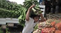 * Más de 3 millones de niños trabajan en México; miles son explotados * Pablo Bedolla, alcalde de Ecatepec, no puede con la inseguridad El líder de la Confederación Nacional […]