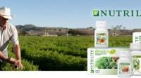 La empresa Amway dio a conocer que ante el ritmo ajetreado de la vida cotidiana hace el necesario del uso de suplementos vitamínicos que coadyuven a una mejor alimentación y […]