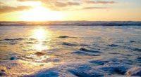 Barbara Pompili, Secretaria de Estado para Biodiversidad de Francia, comentó que se deben tomar decisiones definitivas a favor de la sustentabilidad en los océanos; en diversos temas de protección de […]