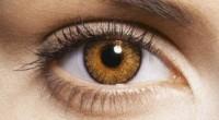 Prevenir, atender y concientizar a la población, comunidad médica y gobierno sobre la importancia que tiene la atención de la salud visual es el objetivo del Día Mundial de la […]