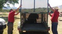 Un juvenil macho de oso negro fue detectado en lo alto de un árbol por vecinos de la colonia Sarabia de la ciudad de Sabinas, Coahuila, se estima que por […]