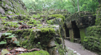 Se dio a conocer que Palenque, Chiapas para este fin de año será una gran alternativa de turismo, por la belleza de sus zonas turísticas como es la selva lacandona, […]