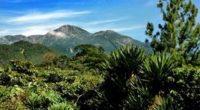 La Reserva de la Biosfera Volcán Tacaná declarada como parte de la Red de Reservas de la Biosfera del programa MaB de la Organización de las Naciones Unidas para la […]