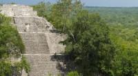 La zona de Calakmul, Campeche, además de poseer una extraordinaria riqueza cultural e histórica, esta antigua ciudad maya y forma parte de la selva más extensa y conservada de México […]