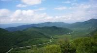 Hace varios años que Nueva York adoptó la reserva natural de las montañas Catskill, que conforman una cuenca con Delaware y Croton, para dar viabilidad a servicios ecosistémicos (agua, aire […]