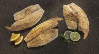 El organismo ICPMX (Impacto Colectivo por la Pesca y Acuacultura Mexicanas) informó que busca promover, durante esta temporada de cuaresma, el consumo de pescados y mariscos mexicanos de origen social […]