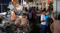 En esta temporada que concluye con la Semana de Pascua, Conapesca y la Procuraduría Federal del Consumidor (Profeco) realizarán visitas a importadores, distribuidores y comercializadores de pescados y mariscos (frescos […]