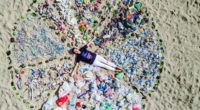 El plástico supone un reto para el medio ambiente por lo que el concurso#ViveconCiencia2018ha convocado desde su surgimiento, hace cuatro años, a estudiantes de licenciatura interesados en realizar creativas propuestas […]