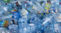 Greenpeace México presentó este sábado una guía que busca informar a los consumidores mexicanos sobre los establecimientos que, distribuidos en 22 entidades del país, ofrecen alternativas libres de plásticos. La […]