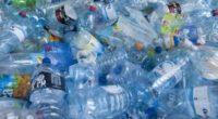 En México apenas se recicla 5% de los plásticos que se consumen y la práctica del reciclaje no ha funcionado por la cultura desechable que persiste en la sociedad, el […]