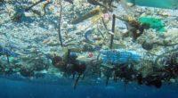 Los plásticos que terminan en los océanos son una amenaza global. Cada año ocho millones de toneladas de estos materiales terminan en mares y océanos, incorporándose a las cinco islas […]