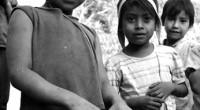 La pobreza seguirá galopante en la región, a causa de la presente crisis financiera. Los Objetivos del Milenio, entre los cuales se cuenta el Medio Ambiente, son, desde […]